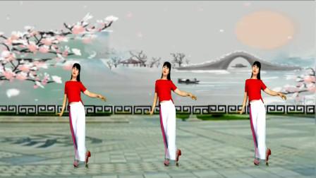 热门广场舞《雪花来了梅花开》简单的舞蹈, 喜欢的跳起来吧 !