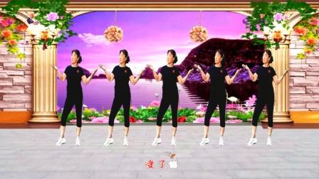 梦中的流星广场舞《小行囊》 简单32步  动感时尚