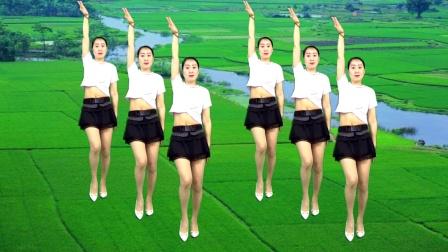 优质广场舞《沉睡的泪》时尚32步 附教学