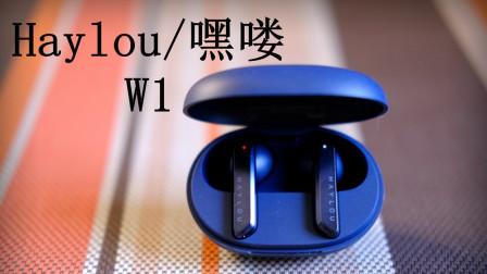 Haylou/嘿喽W1 一款极具性价比的圈铁组合TWS耳机