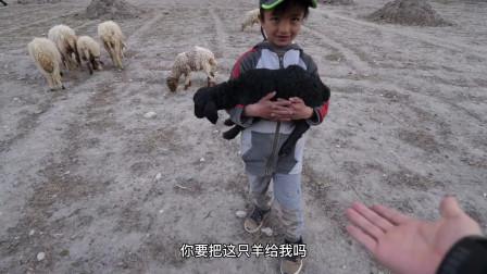 480元在巴基斯坦买一只羊,羊主人很开心,做烤全羊请巴铁朋友吃