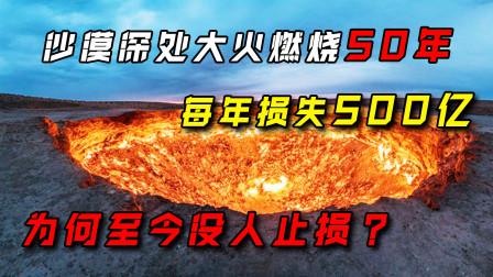 沙漠深处一场大火燃烧50年,每年损失500亿,为何至今没人扑灭?