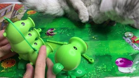 豌豆射手宝宝连忙叫来妈妈 母子联手对付怪物