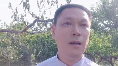 """唐渊完整范唱《党校姓党》怀柔""""乡村振兴""""活动间隙完成"""