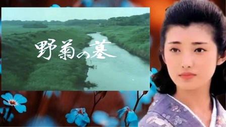 日本经典电影《野菊之墓》主题歌