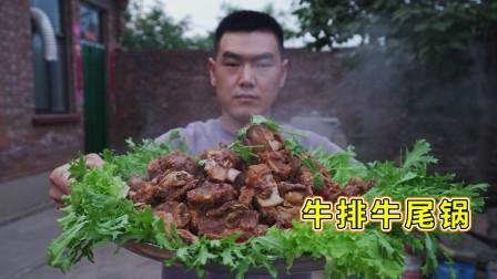 阿远今天吃牛排牛尾锅,秘制调料,炖煮仨小时,啃起来真过瘾