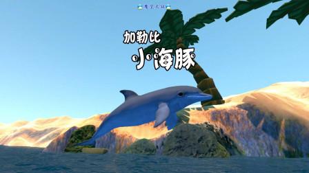 """天铭 海底大猎杀 第三季 15 加勒比""""小海豚""""!"""