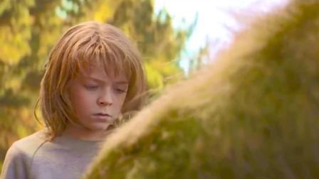 小男孩在森林捡到一条龙,一起生活6年