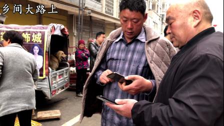 农村大哥花700块买牧羊犬,喂养不到15天转手卖,说出原因都是泪