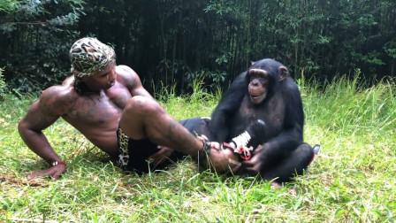 猩猩好奇脱下男子的鞋,凑过去闻了闻,下一秒憋住别笑