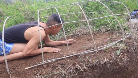 野外第二天:带工具上山,搭建野外庇护所