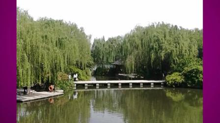 竖版短视频《大明湖公园的桥——柳烟桥》