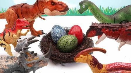 恐龙蛋孵化出3D拼图组装恐龙玩具