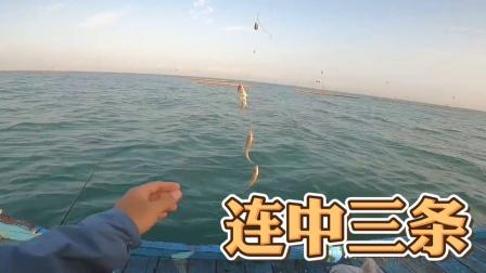 这个季节钓鱼最好,鱼真多!