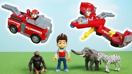 汪汪队莱德和毛毛驾驶变形消防车帮助小动物