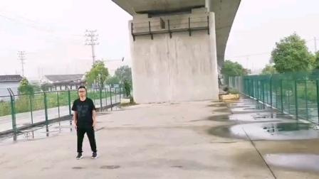 传统杨式精炼二十八势