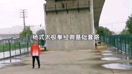 杨式太极拳经典基础套路