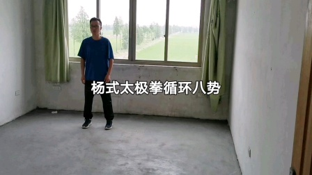 杨式太极拳循环八势
