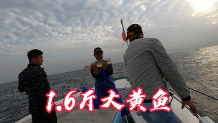 再次出发钓黄鱼,朋友人品爆发中一尾1.6斤大黄鱼,看把他嘚瑟的