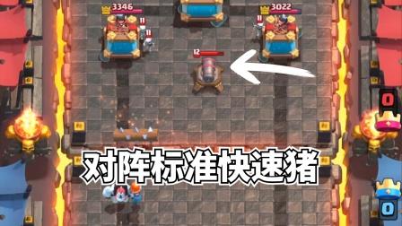 皇室战争:对阵标准快速猪卡组