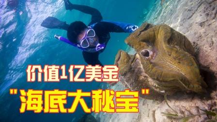 """海底发现天价""""大秘宝"""",一颗价值1亿美金,让赶海人一夜暴富!"""
