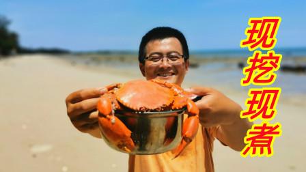 红树林边赶海抓到锅一样大的螃蟹,架上锅直接炖了,实在鲜美