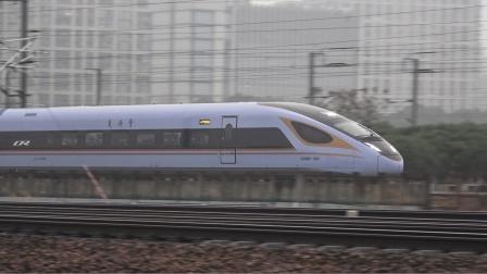 【2021.01.22】[杭甬客专][杭州东站附近] D3136次 CR300BF-3010-3006
