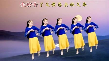 网红情歌广场舞《等月圆等花开》优美动听,句句走心,简单更好看