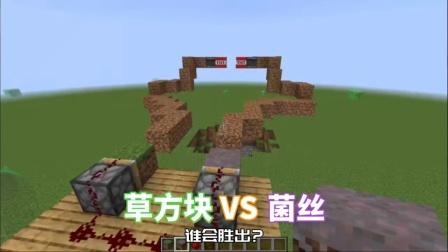 [MC]草方块VS菌丝,谁会胜出?