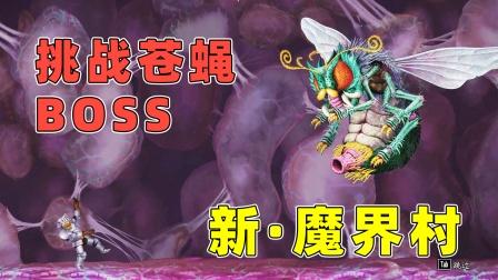 魔界村:好家伙!这么大的苍蝇BOSS!