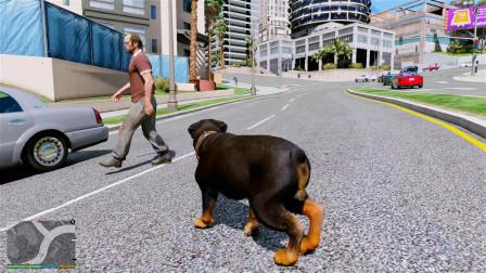 GTA5:当老崔被一只狗一直跟踪时,会有什么反应?