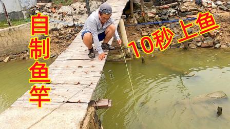 这虾虎鱼这么好钓,吃了会不会影响智商?