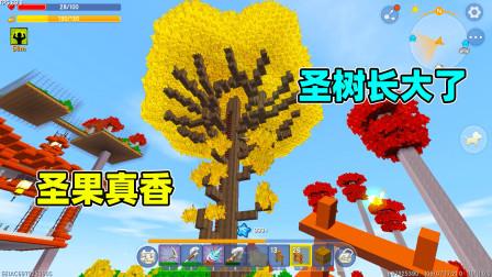 迷你世界高级生存456:圣树真的长大了,圣果还能持续加血,真香