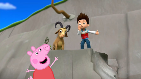汪汪队立大功莱德向小猪佩奇求助