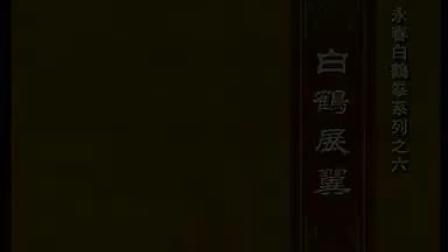 永春白鹤拳系列-白鹤展翼