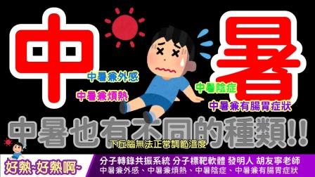 【中文字幕】wellness 好熱~好熱啊~ 中暑也有不同的種類!! 中暑兼外感、中暑兼煩熱、中暑陰症、中暑兼有腸胃症狀