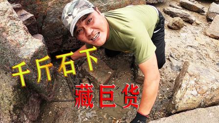 下满猪血鱼饵料的300平巨坑,80公分长巨货躲藏千吨巨石下,发了