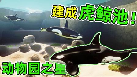 动物园之星:给虎鲸建了一个超大展区!这里又将是游客的聚集地!