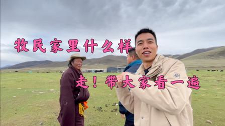 实拍!西藏牧民家里什么样?进去一看太让我惊讶了