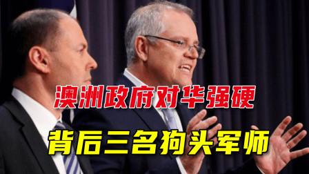 澳对中国强硬,背后有仨狗头军师,澳专家:对华政策走到美国前面