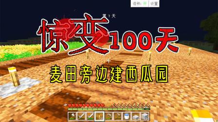 我的世界惊变100天6:新建一个瓜田!发展农业,以后与村民交易!
