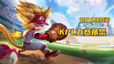 王者荣耀:KPL迎来第二位被禁用的英雄!