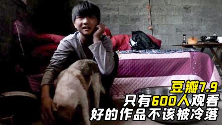 大山深处,一个孩子和一条狗的故事,这才是扎根中国现实的纪录片