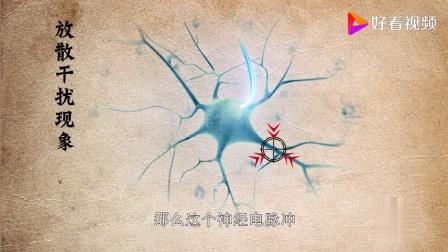 王东岳哲学讲座第93课:王东岳讲中医针灸