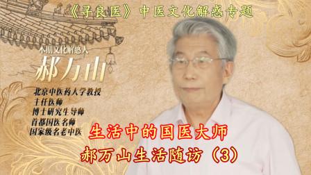 """国医大师郝万山(3)深入浅出""""玄妙""""解析中医传播该如何破局"""