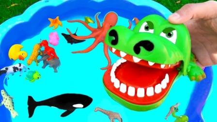 彩色小动物老虎鲨鱼和恐龙来到水池聚会