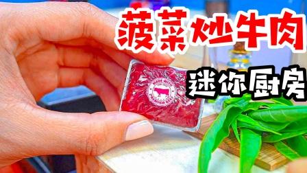小玺迷你厨房:制作美味的菠菜炒牛肉,尝一口好吃哭了!