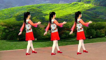 情歌DJ广场舞《人生在世不容易》简单好看32步,轻松学会