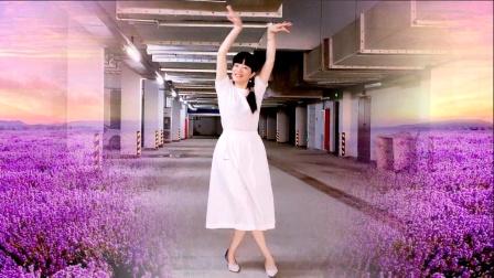 广场舞《流泪的飞蛾》64步 简单优美版本