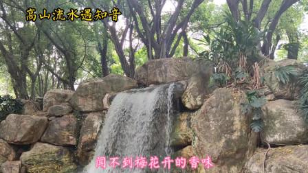 广州珠江公园,欣赏瀑布桂花园荫生植物园快绿湖姜园等,绿树成荫景色宜人